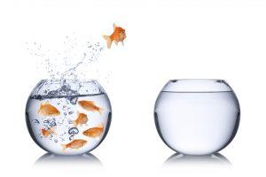 Comment transformer ses erreurs en opportunités...