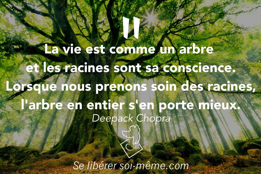La vie est comme un arbre et les racines sont sa conscience. Lorsque nous prenons soin des racines, l'arbre en entier s'en porte mieux. Deepack Chopra. Développer la conscience de soi