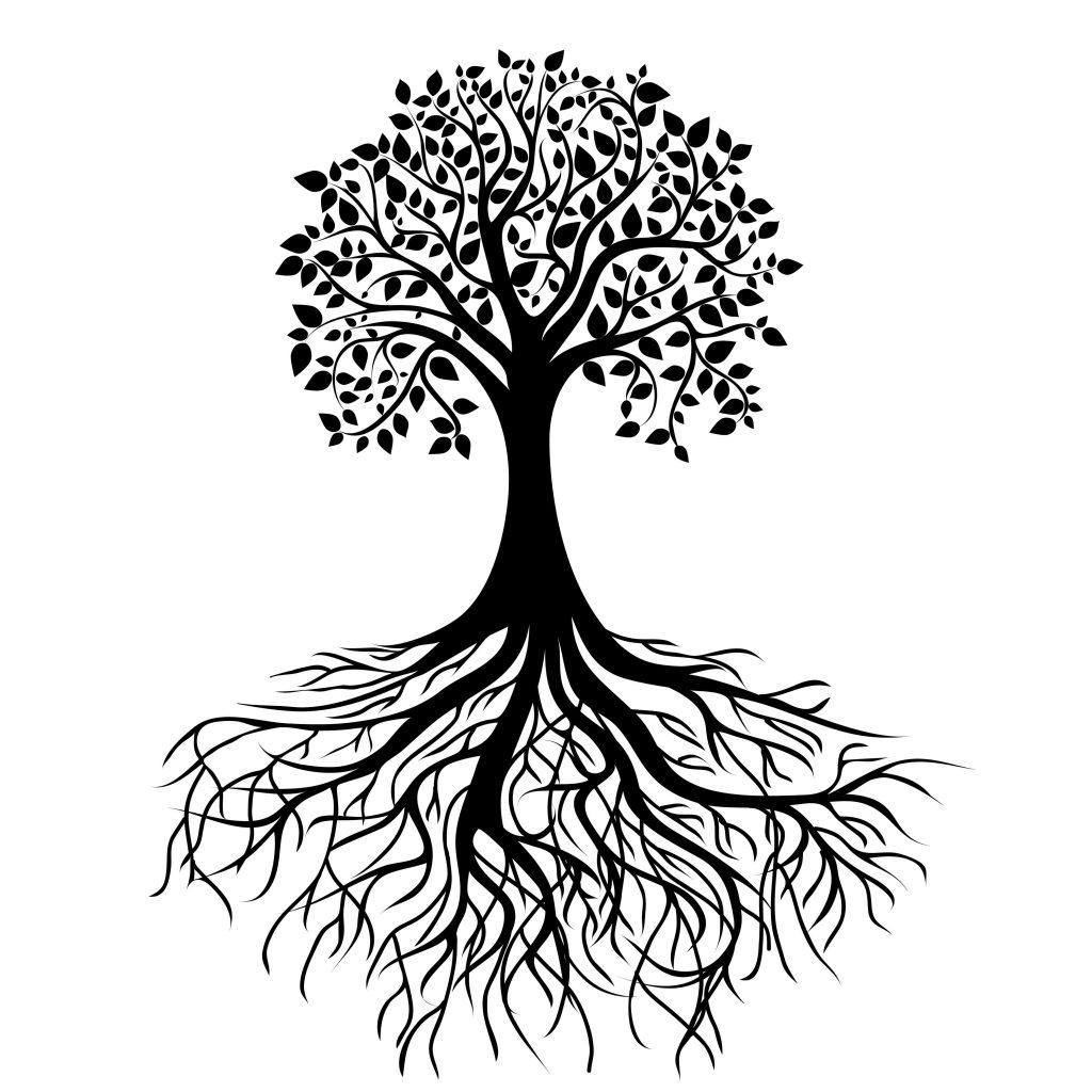 Développer la conscience de soi en amenant ses racines à la Lumière